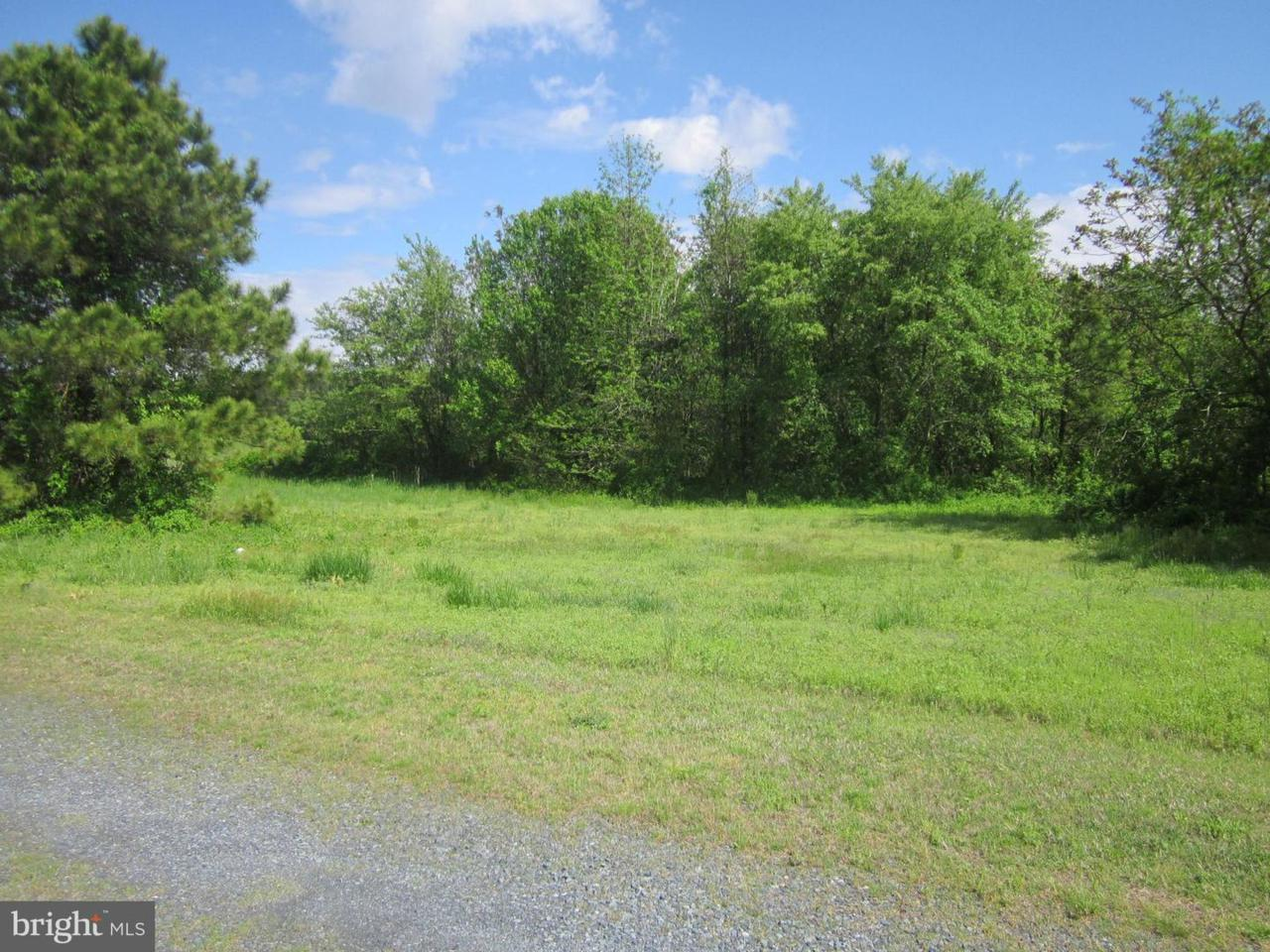 Lot 1 Houston Branch Road - Photo 1