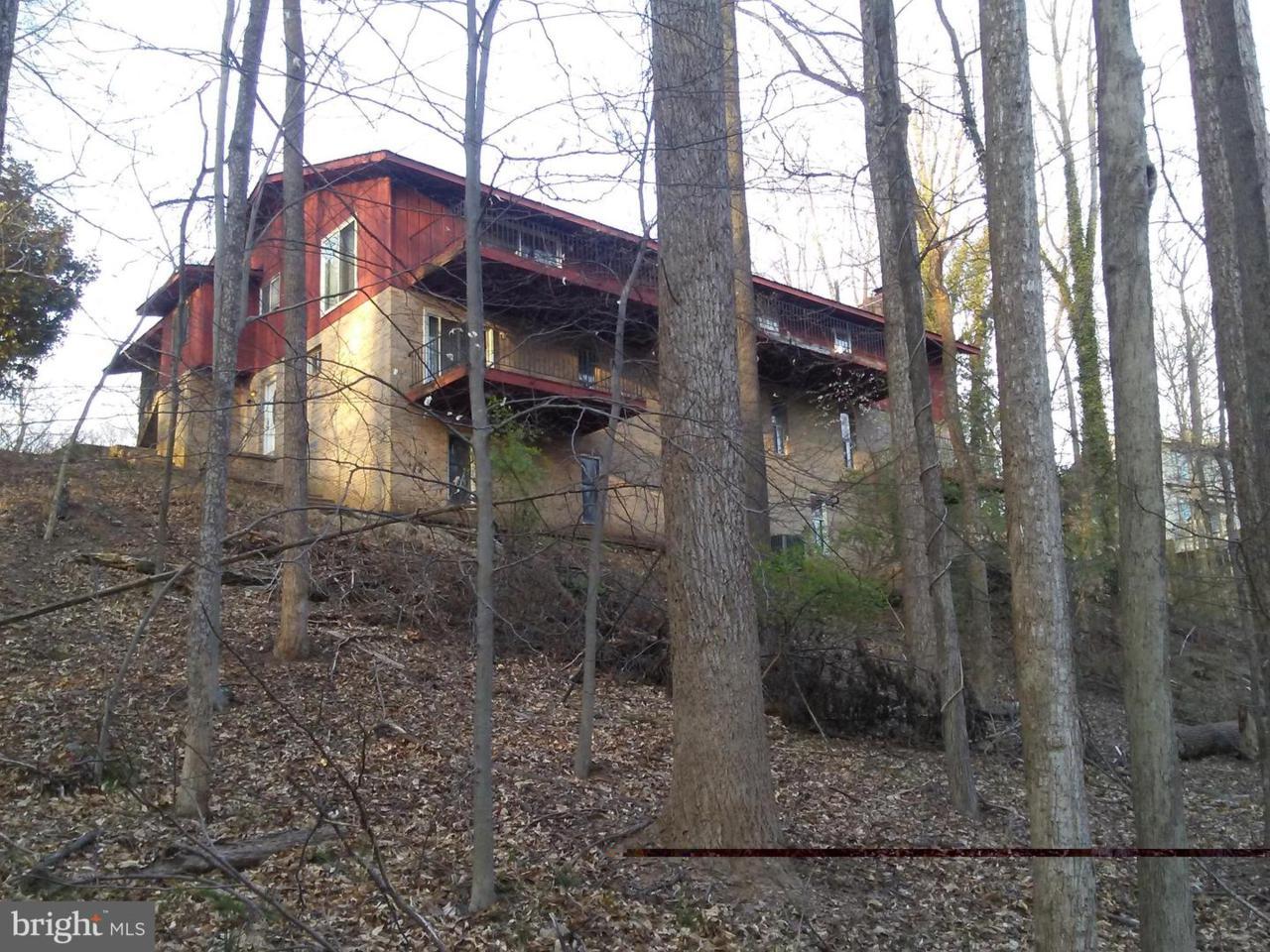 6508 Tall Tree Terrace - Photo 1