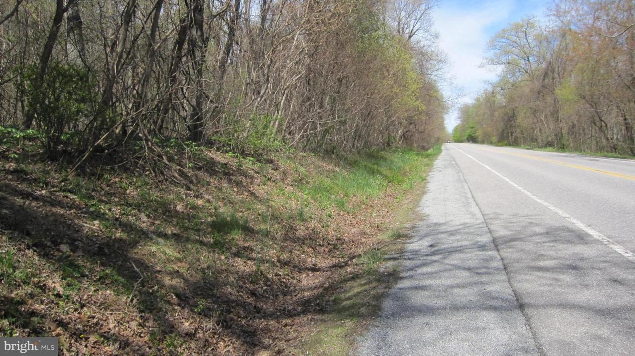 Pennersville Road - Photo 1