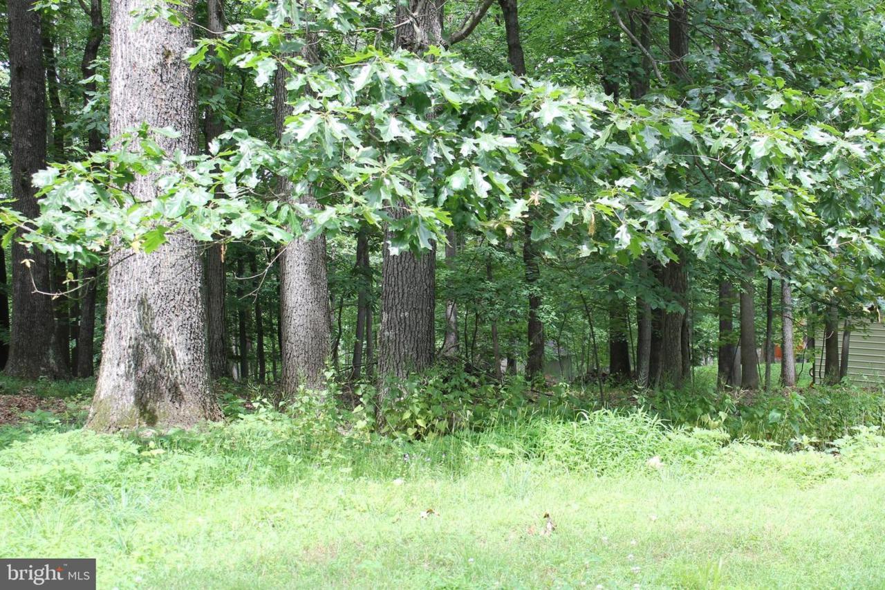 24 Dove Trail - Photo 1
