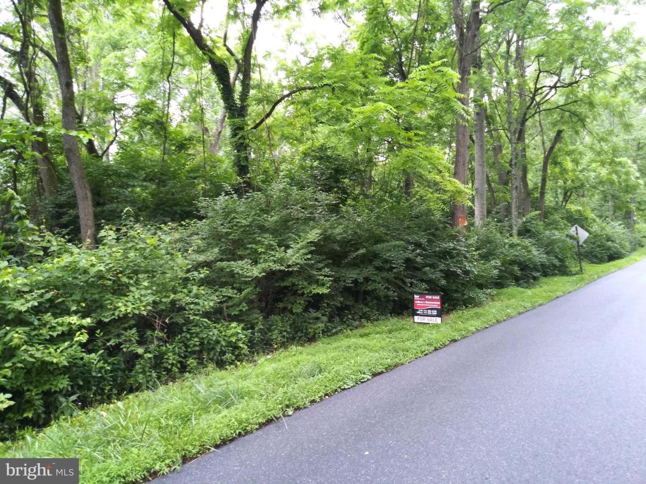 664 Yellow Hill Road - Photo 1
