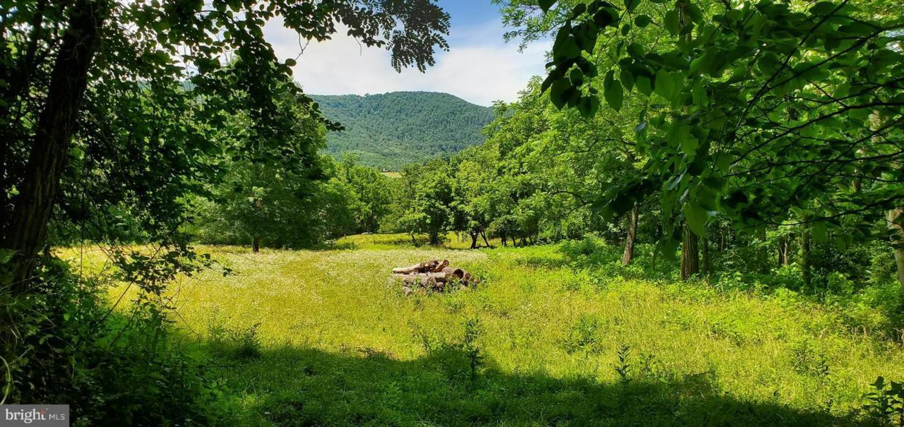 0 Wolf Mountain Lane - Photo 1