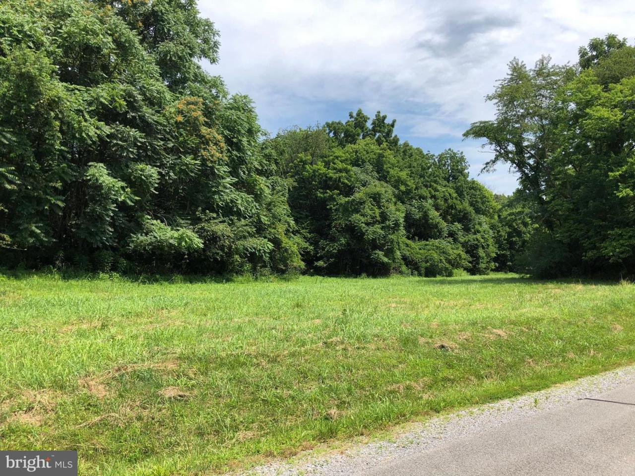 66 Nimitz Lane - Photo 1