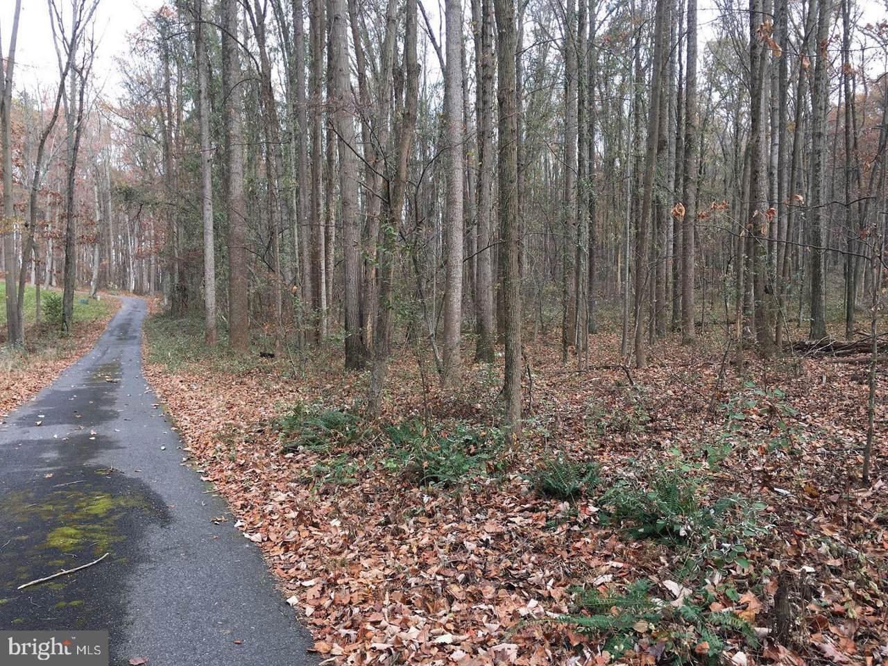 12809A Sagamore Forest Lane - Photo 1