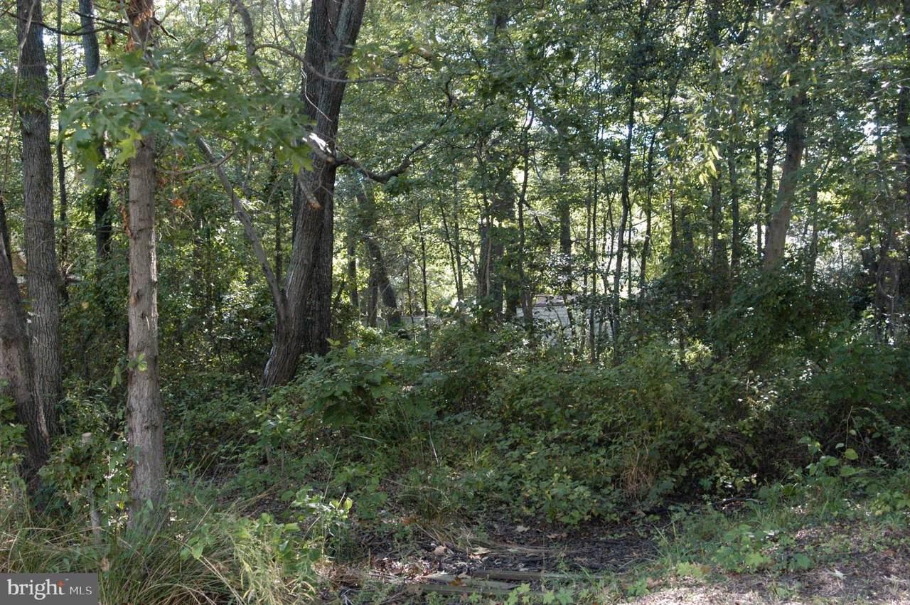 3831 Twin Oaks Drive - Photo 1