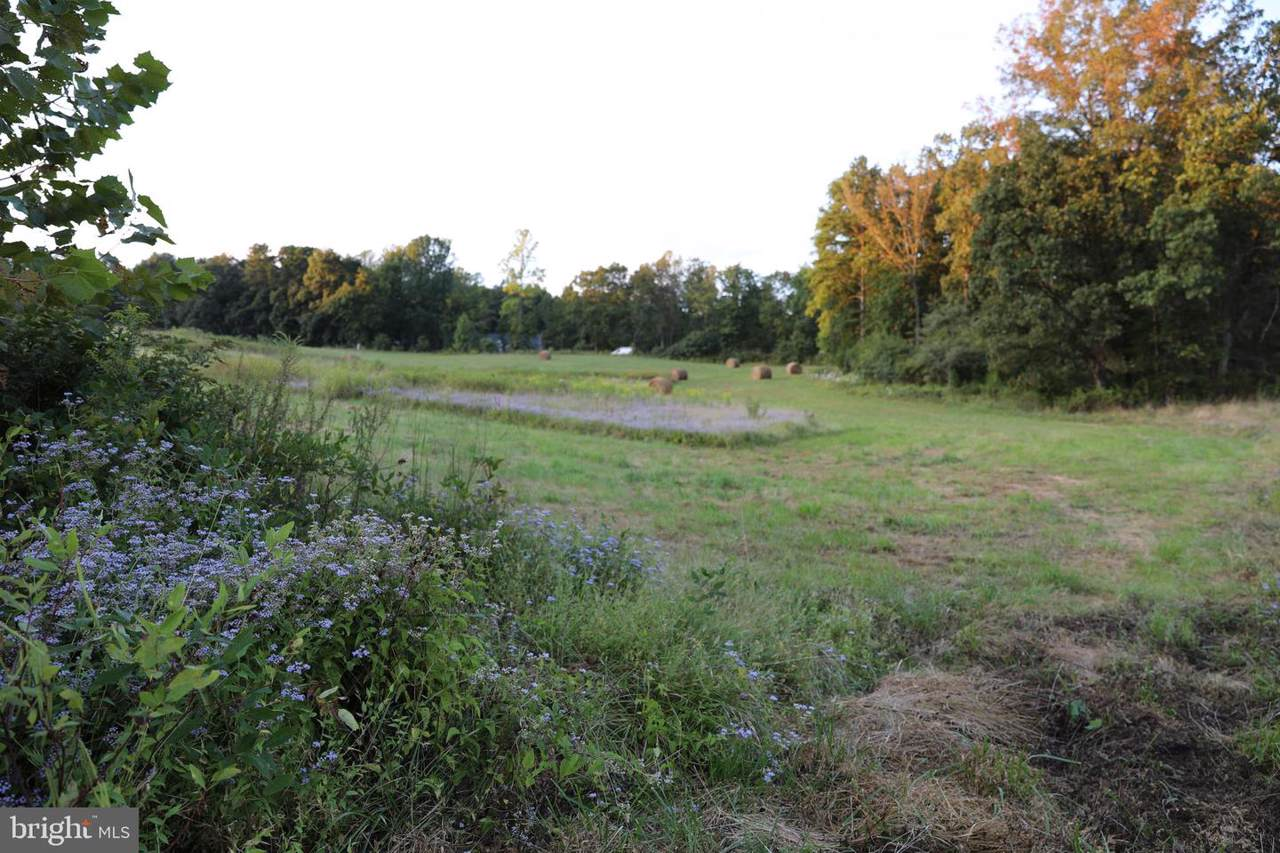 Lot 22 Savannah - Photo 1
