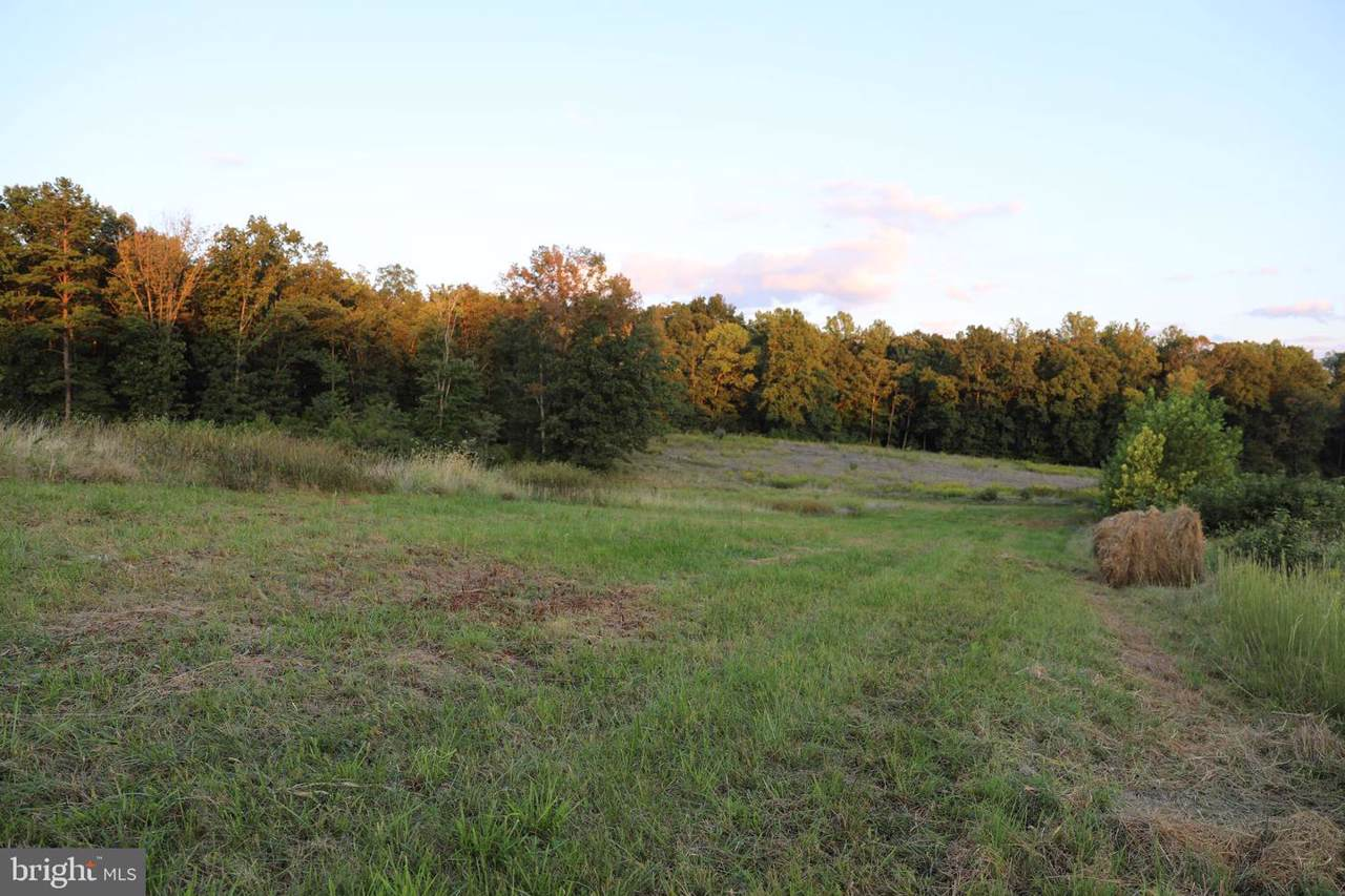 Lot 24 Savannah - Photo 1