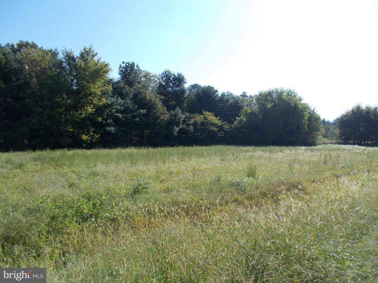 Mount Holly Road - Photo 1