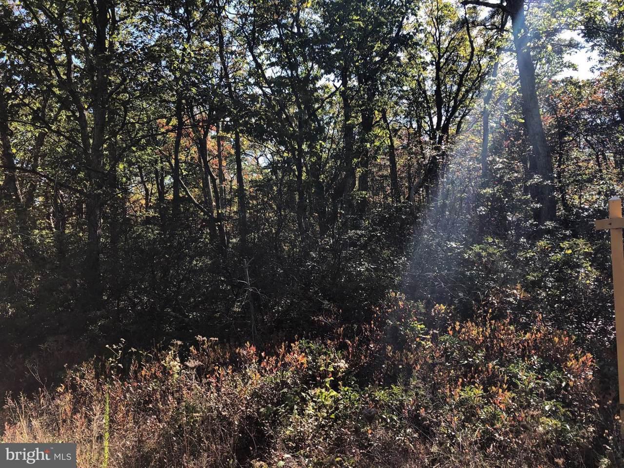 135 Bobcat Trail - Photo 1