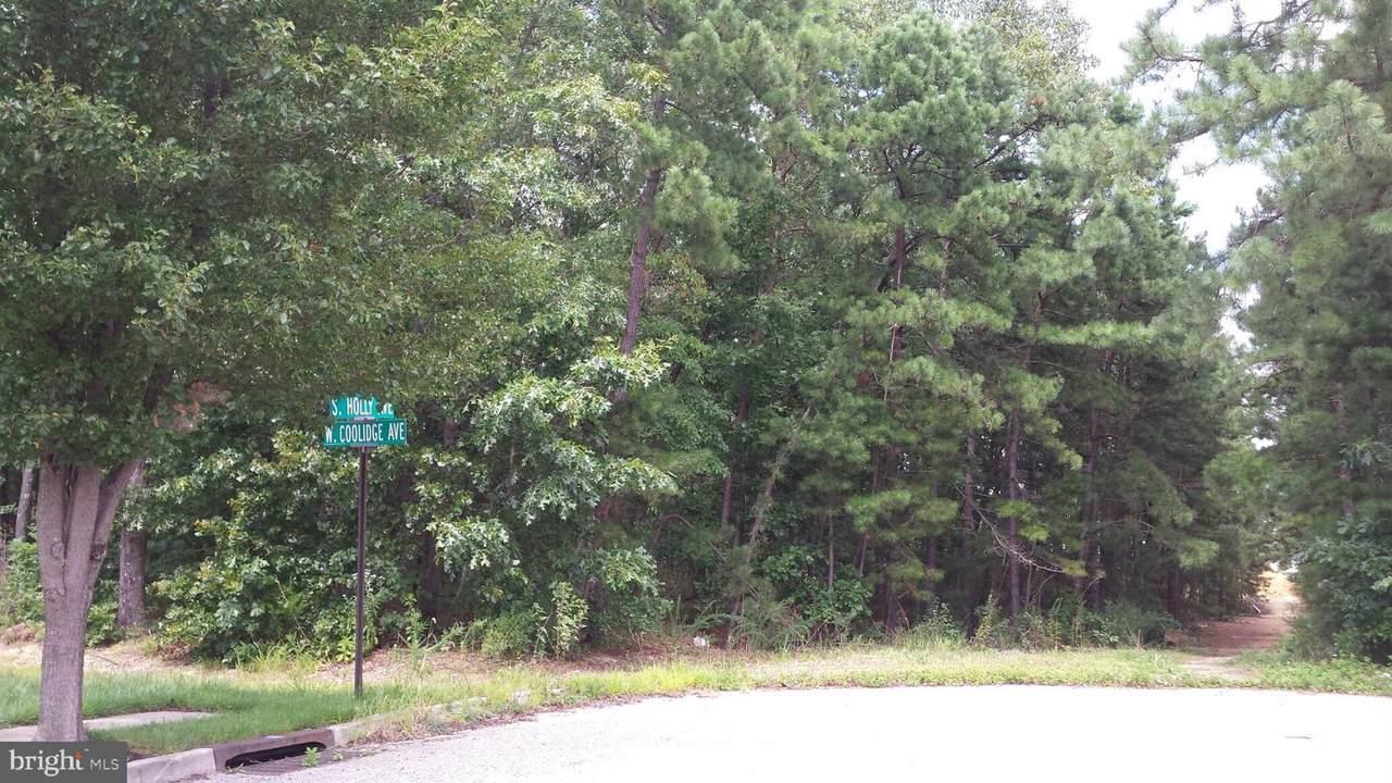 Holly Avenue - Photo 1