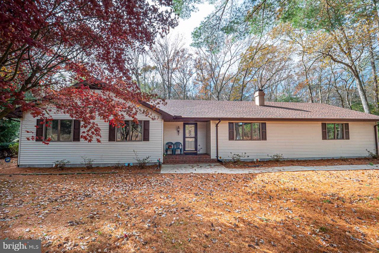 22546 Deep Branch Road - Photo 1
