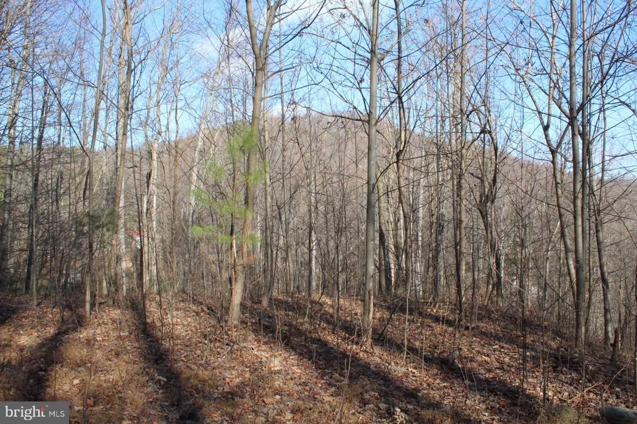 0 Greene Acres Rd S - Photo 1