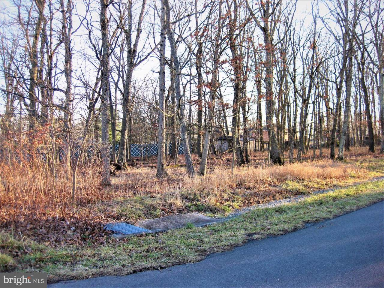 Corner Of Nemacolin And Cherrywood - Photo 1