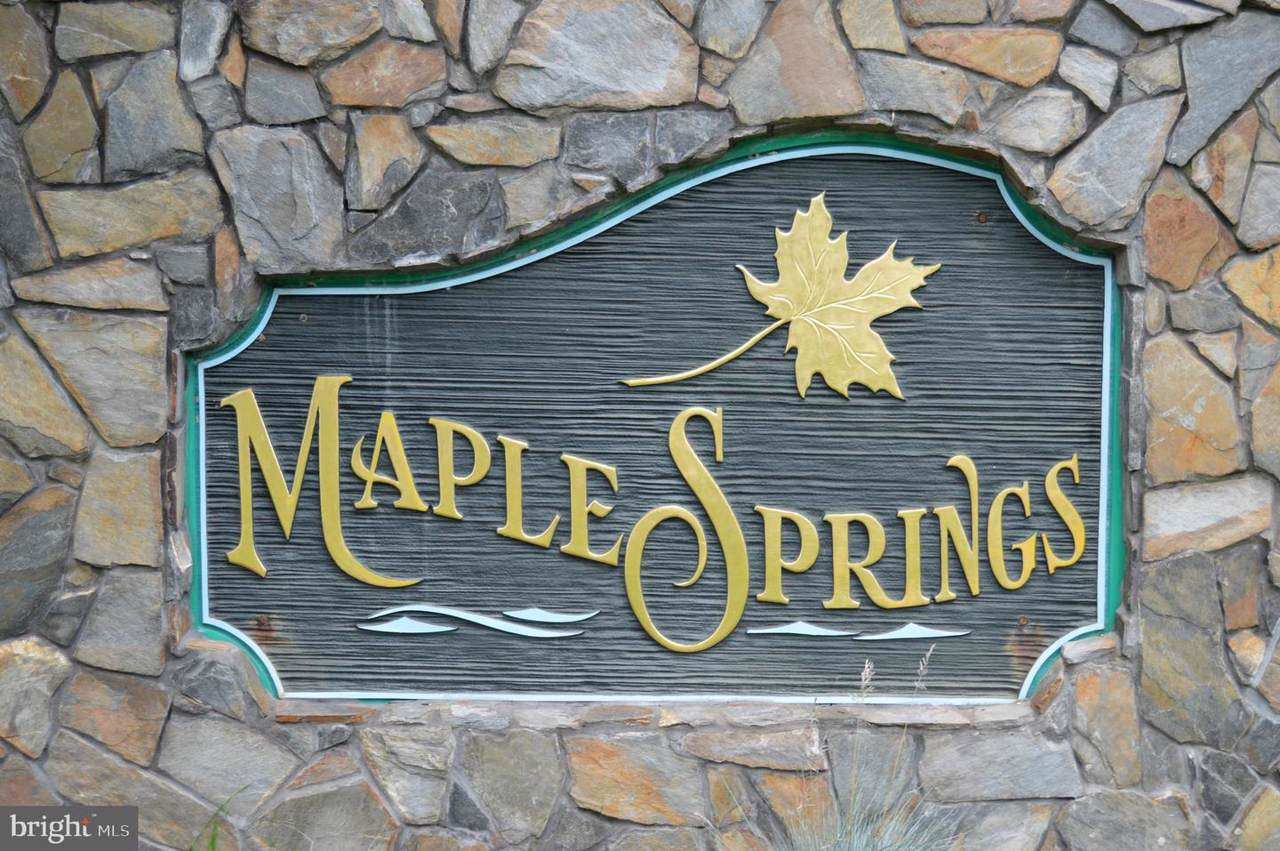 Lot 48 Maple Springs - Photo 1
