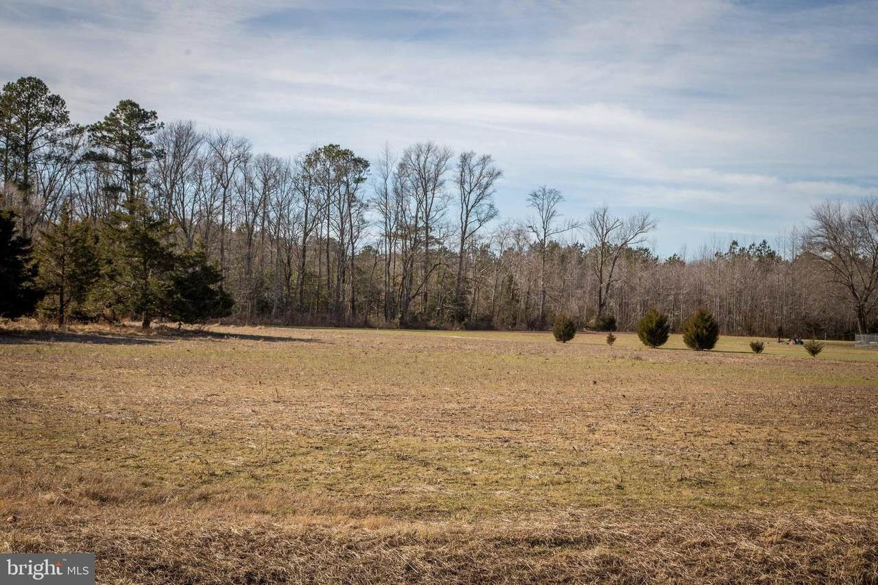 Lot 5 Quail Lane - Photo 1