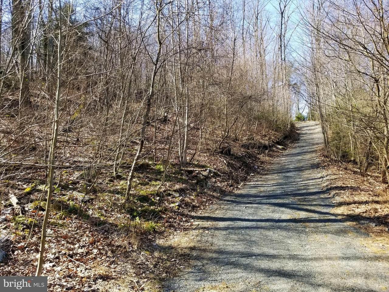 0 Bear Creek Road - Photo 1