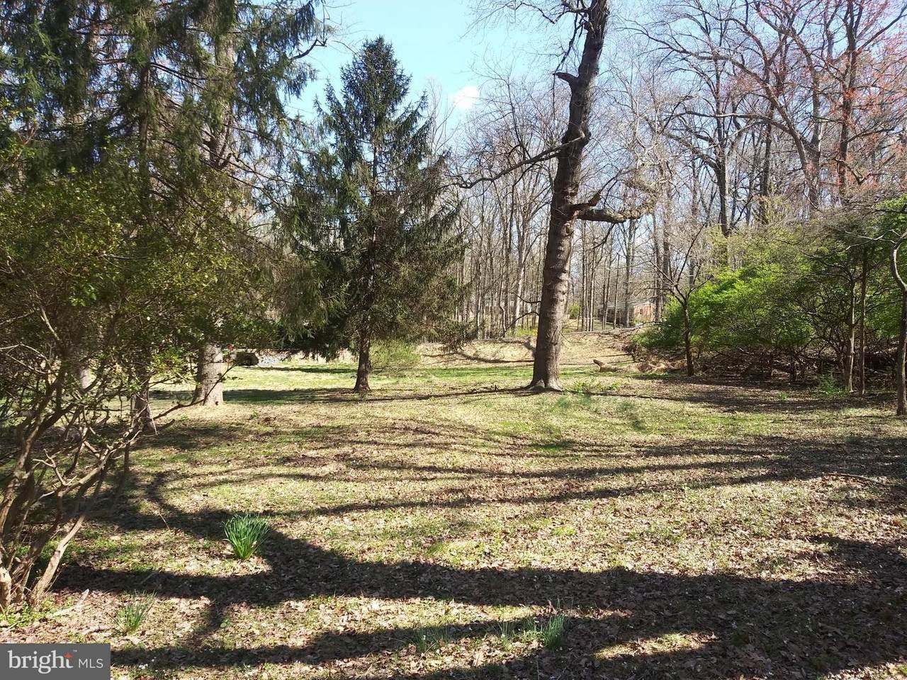 11616 Pine Tree Drive - Photo 1