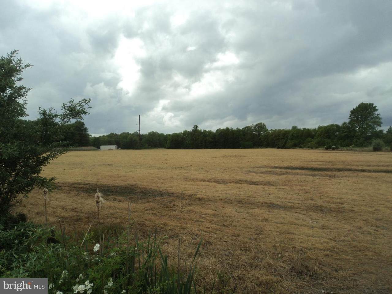 0 Saw Mill Branch Road - Photo 1