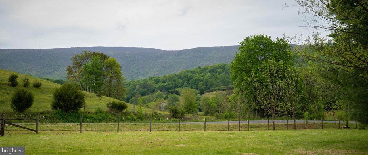 Gooney Manor Loop - Photo 1