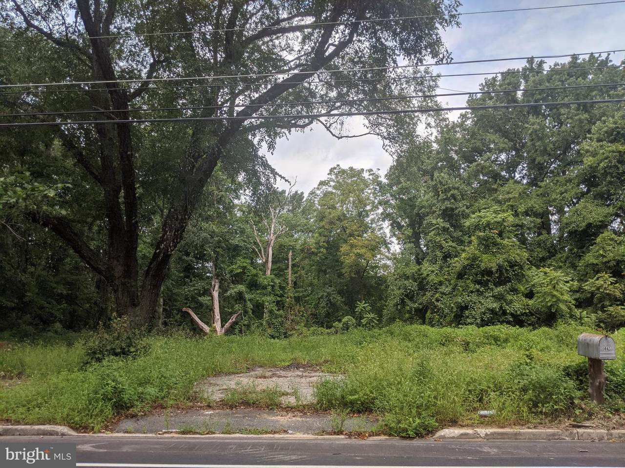 445 Highland Avenue - Photo 1