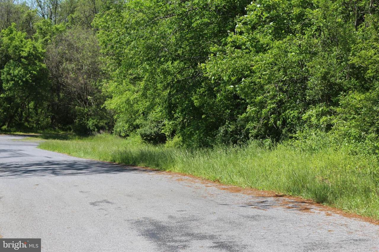 Licking Creek Road-Tract 2 - Photo 1