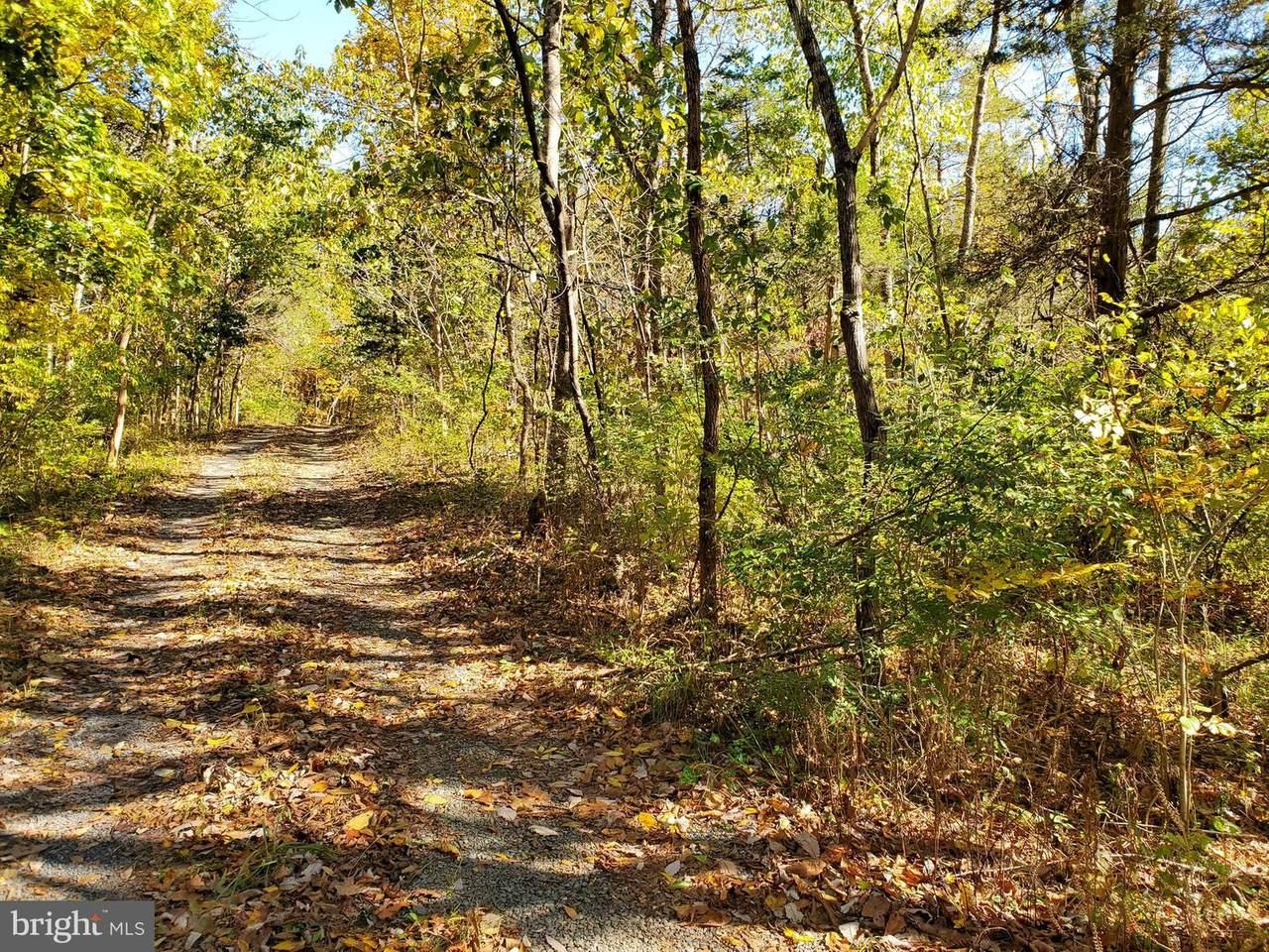 Red Hawk/Woods Way - Photo 1