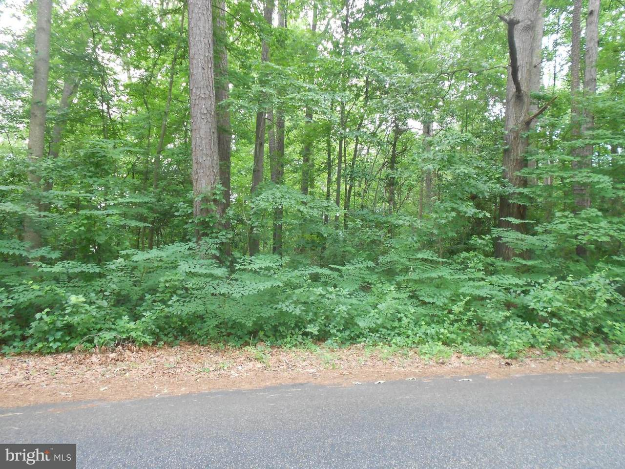 1 Woodland Drive - Photo 1