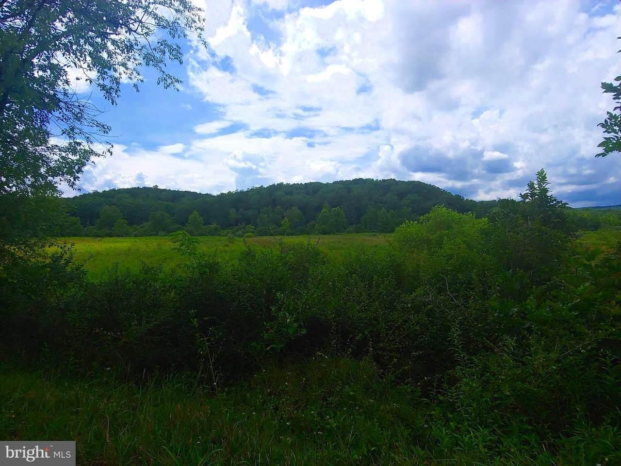 Bear Hill Road - Photo 1