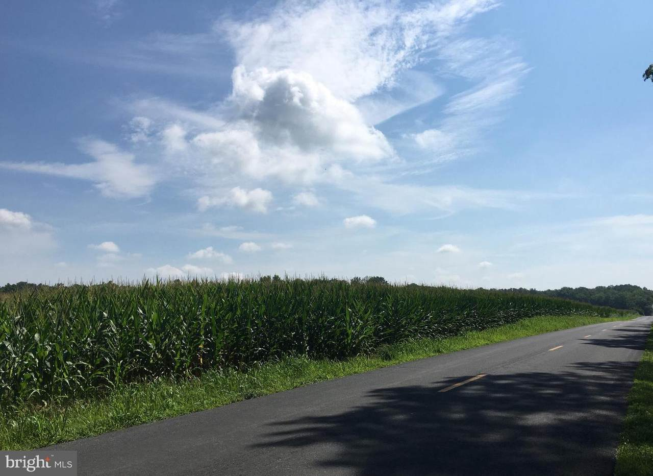 653 Black Diamond Road - Photo 1