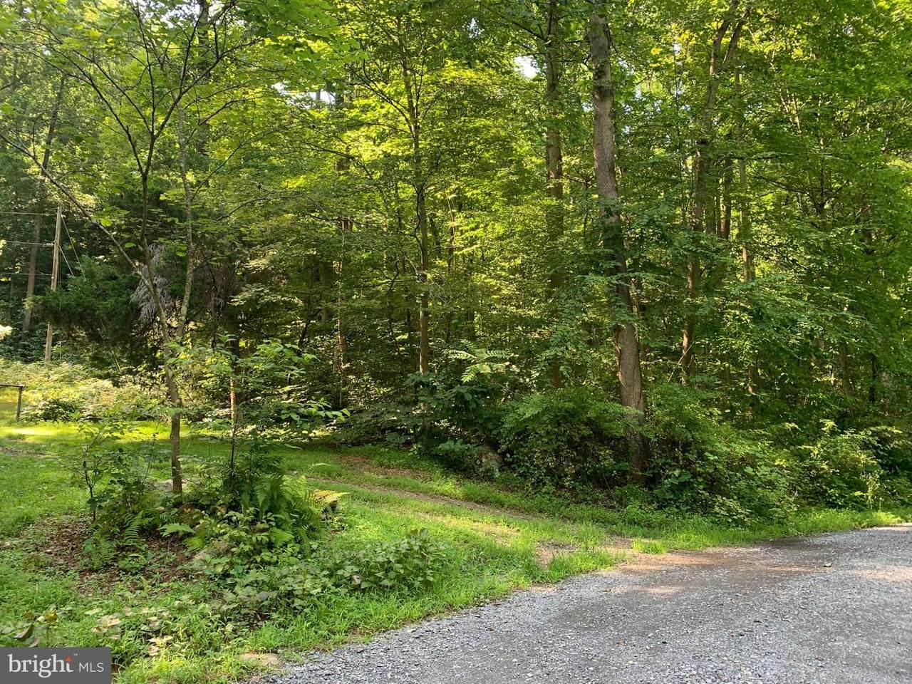 Lot 27 Cacapon Retreat Lane - Photo 1