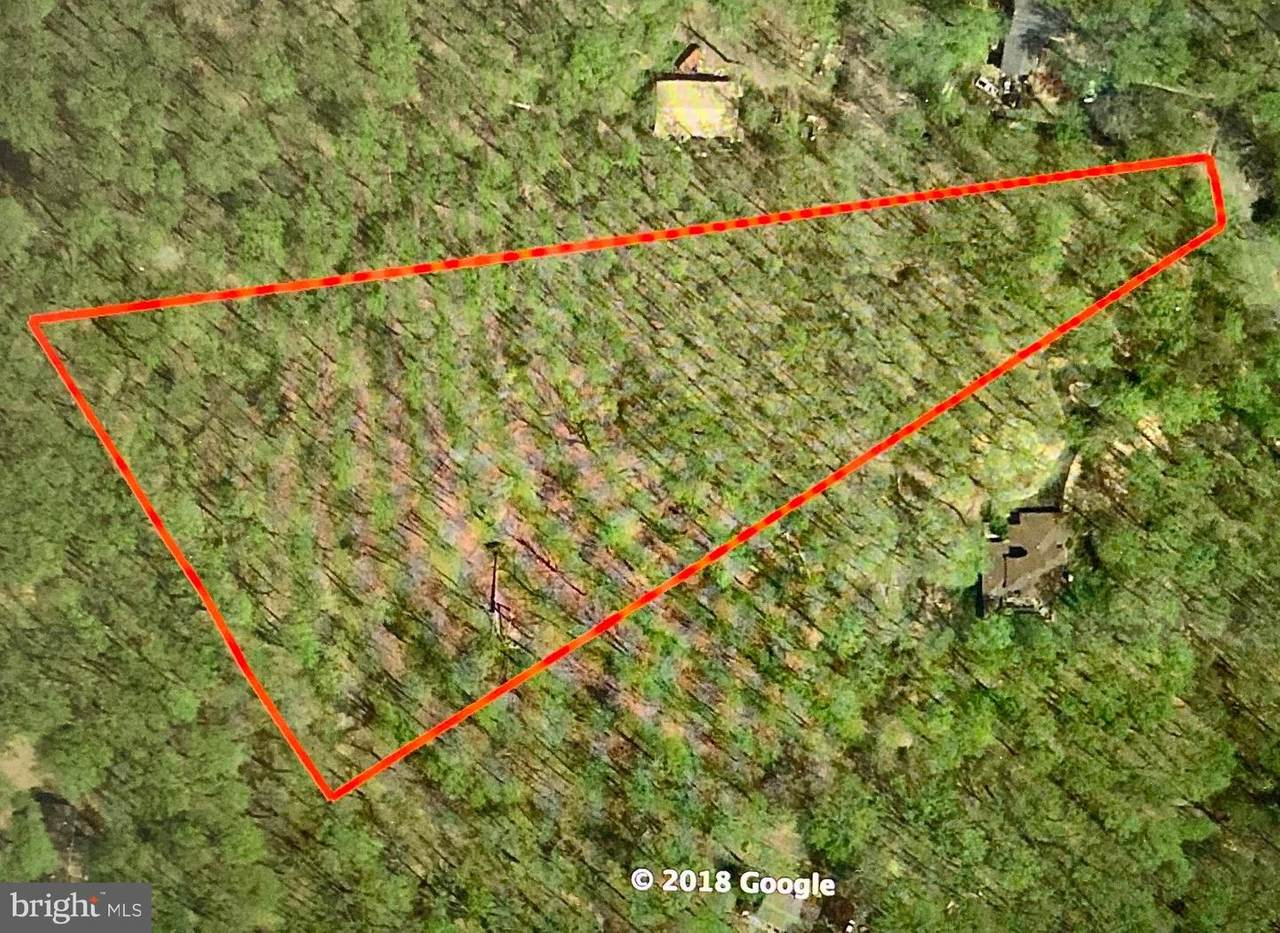 7065 Mink Hollow Road - Photo 1