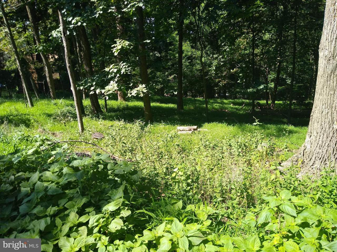 Lot 15Q Deer Trail - Photo 1