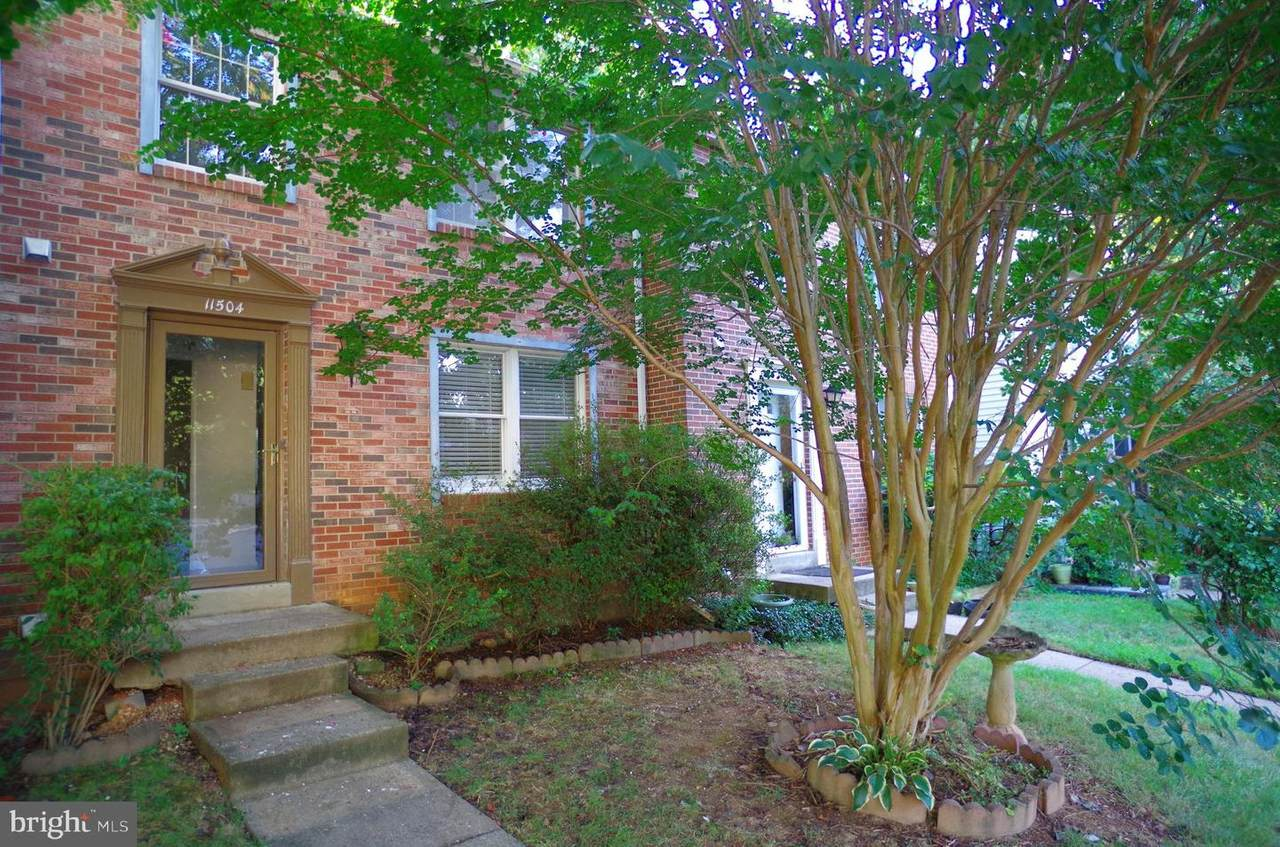 11504 Ivy Bush Court - Photo 1