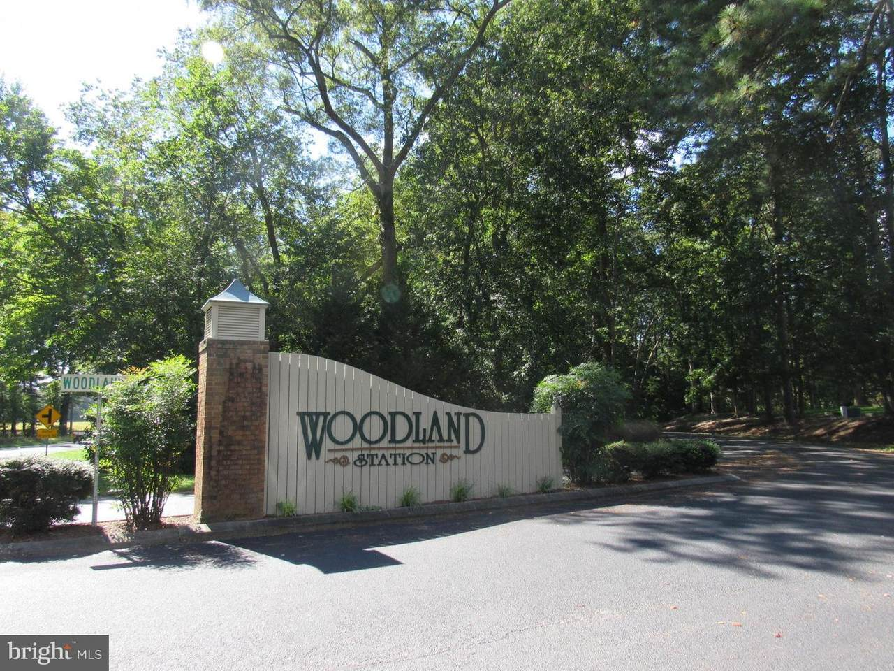 3 Woodland Drive - Photo 1