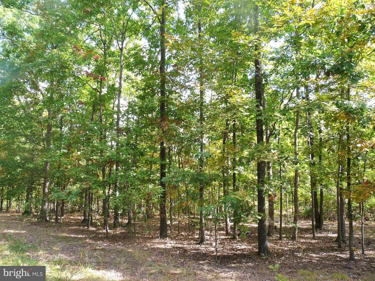 Lot 5 Whistling Winds Trail - Photo 1