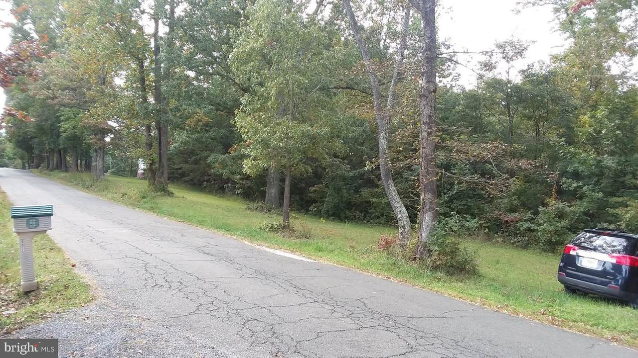 Rte. 674 Frytown Rd - Photo 1