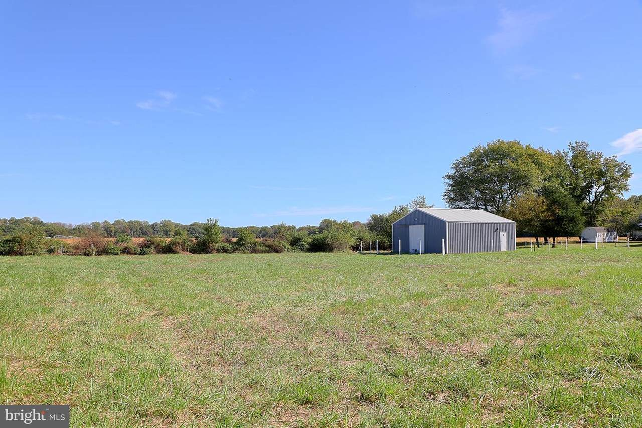 20759 Bucks Branch Road - Photo 1