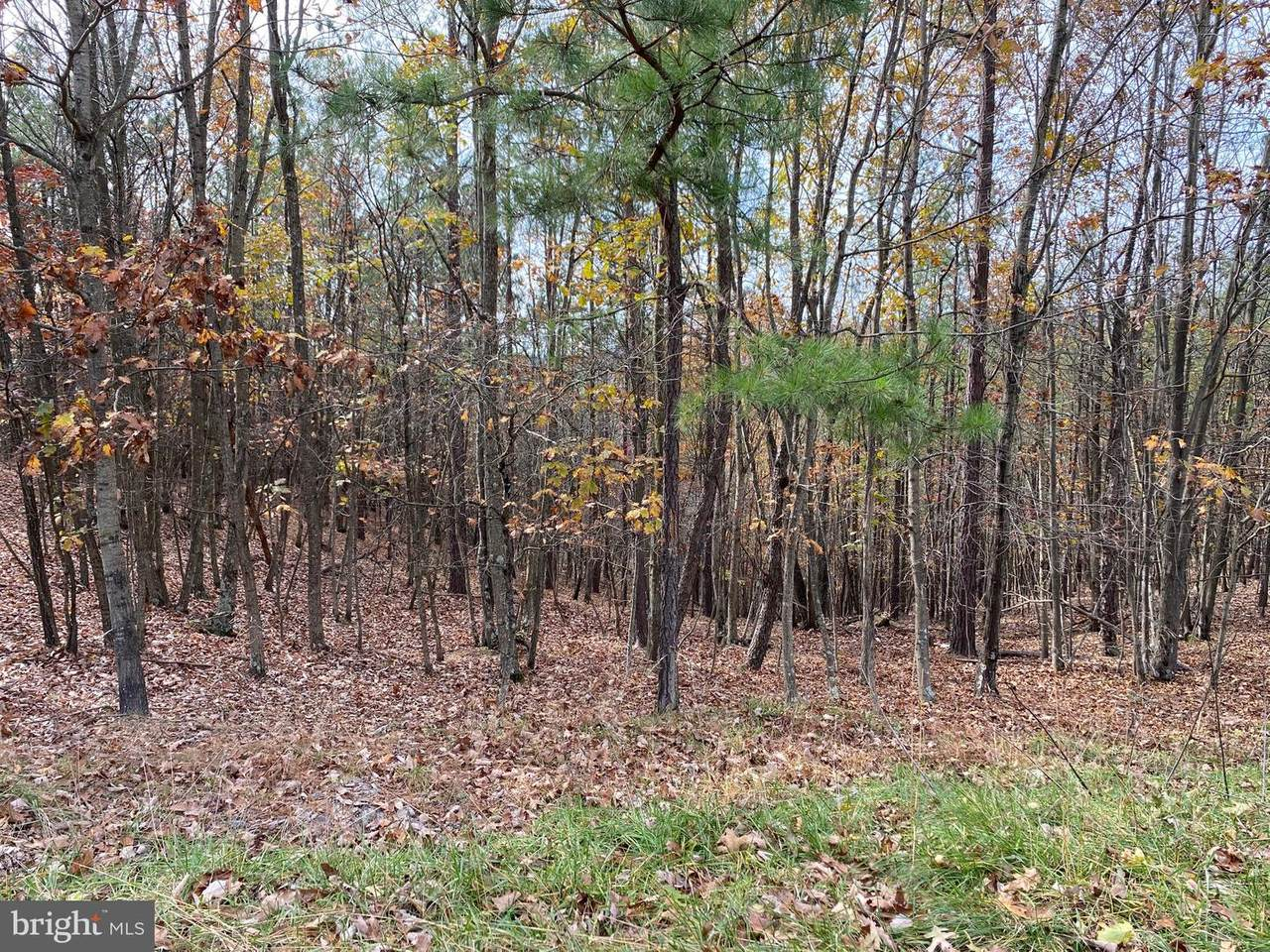 16 Woodridge Trail - Photo 1