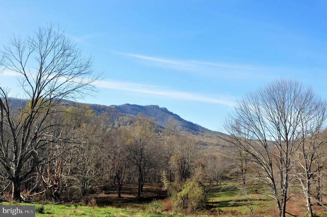 Pine Hill - Photo 1