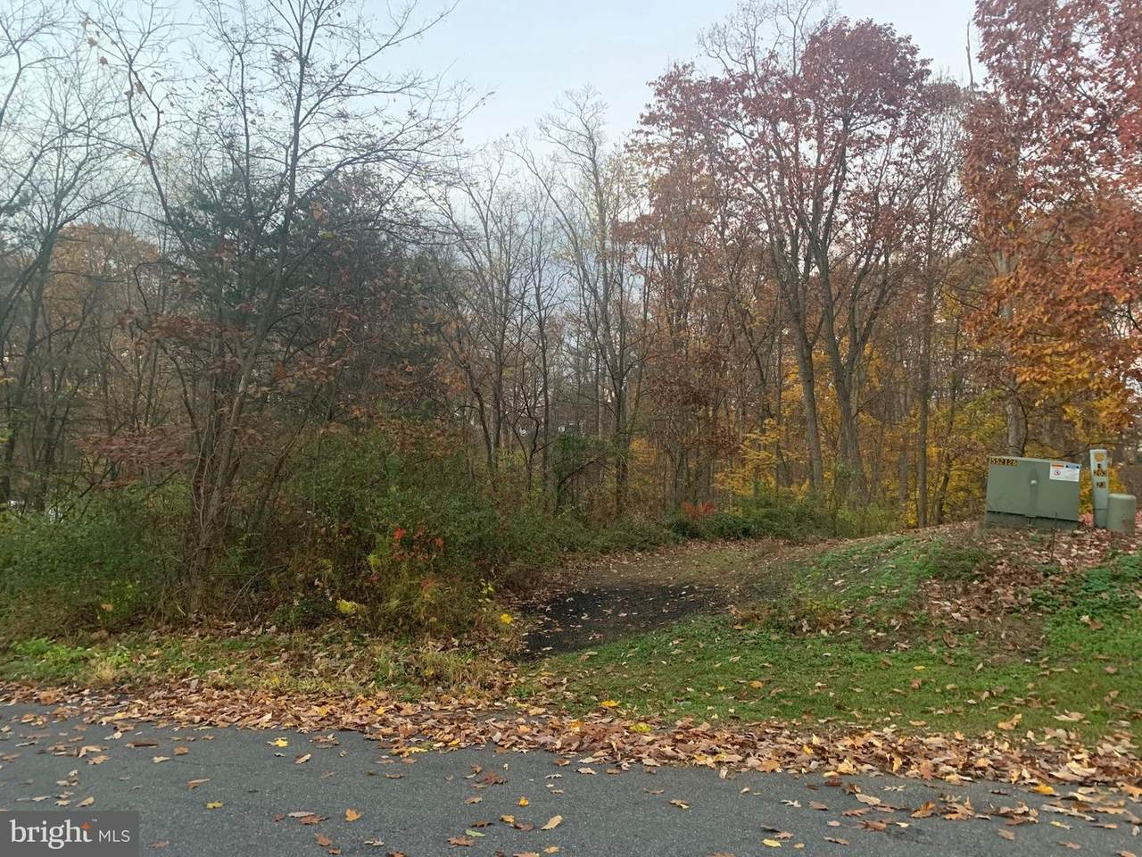Tussey Drive - Photo 1