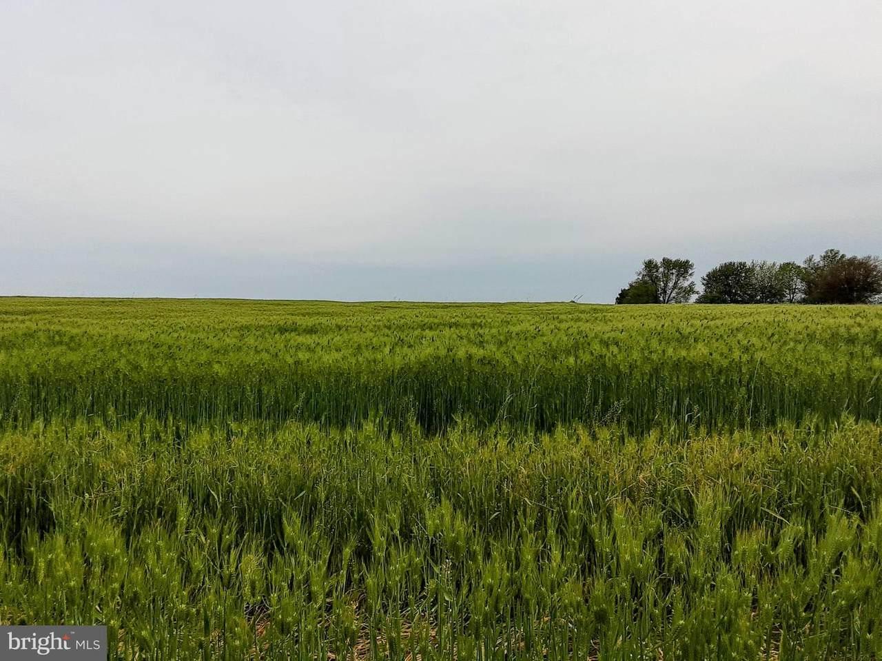 0 Harmony Ridge Drive - Photo 1
