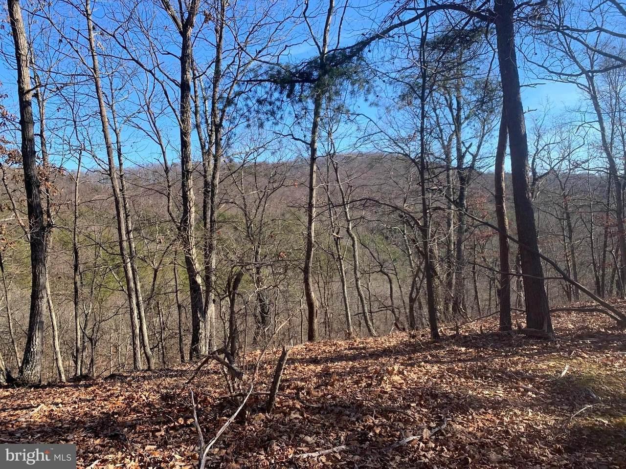 Bluffs Trail Drive - Photo 1