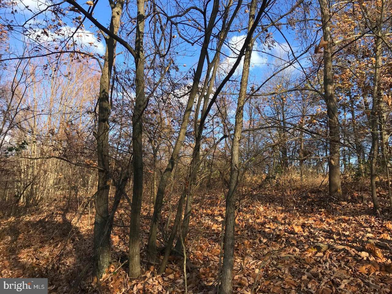 3 Chestnut Ridge Road - Photo 1