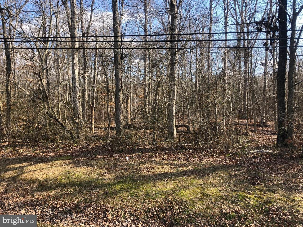 00 Mt Holly - Enm Road - Photo 1