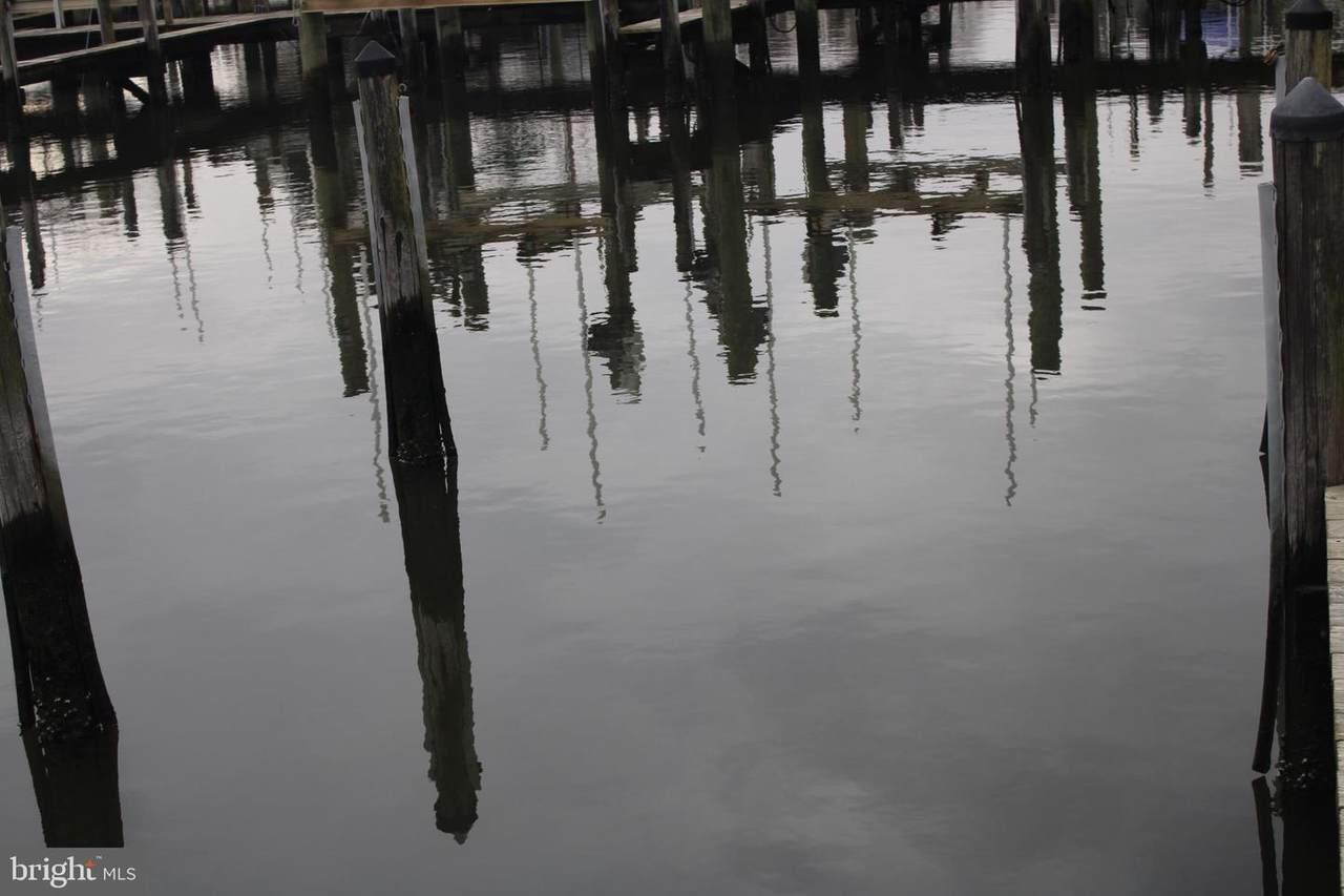 Boat Slip Whites Creek Marina #103 - Photo 1