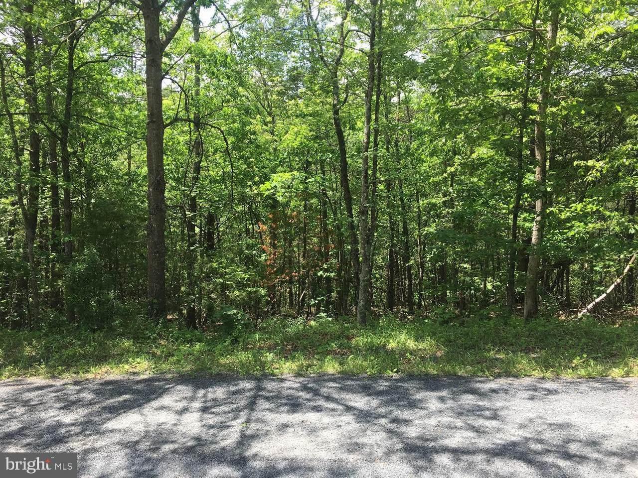 Cottonwood Drive Unknown - Photo 1