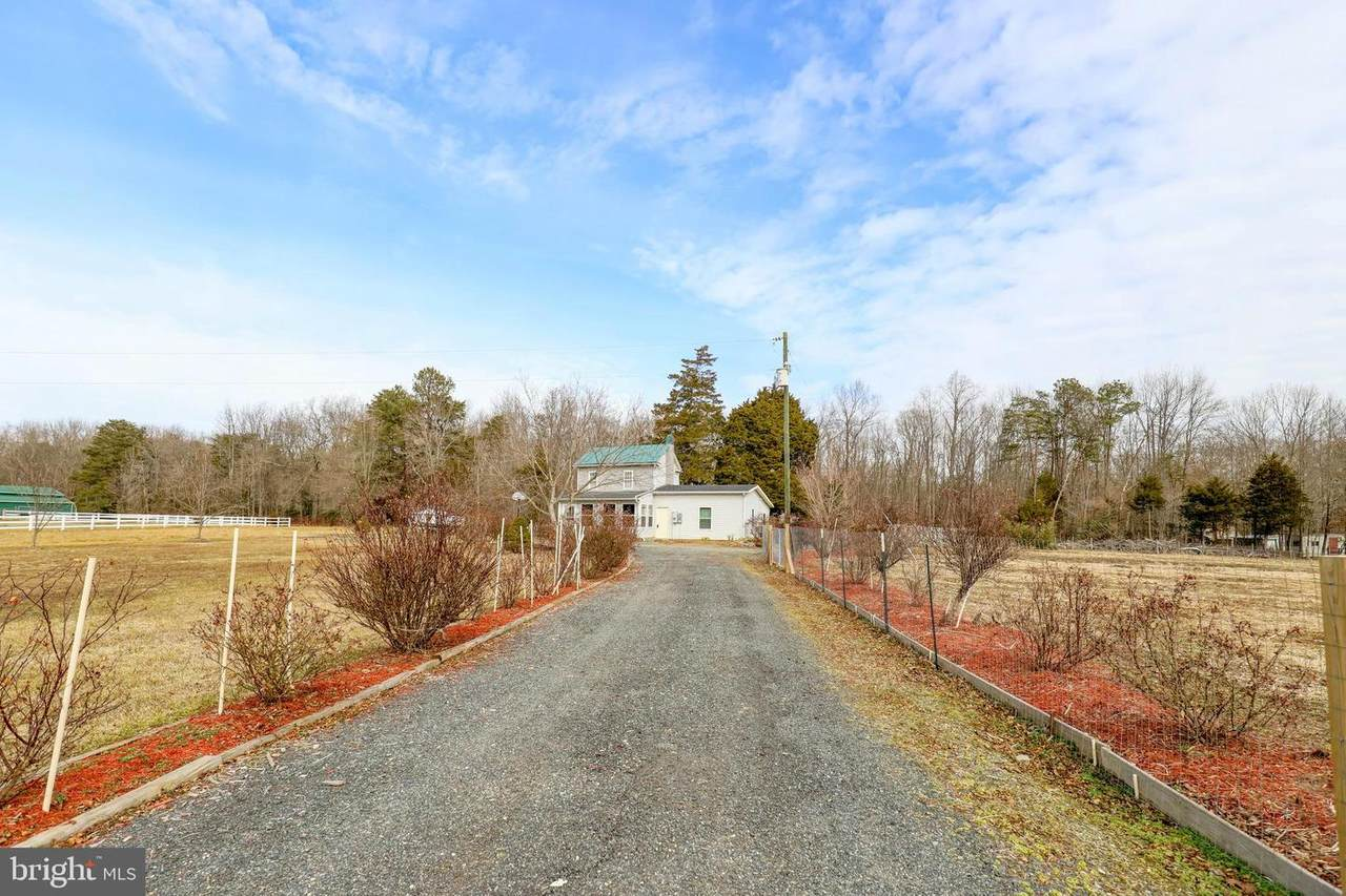 6707 Hickory Ridge Road - Photo 1