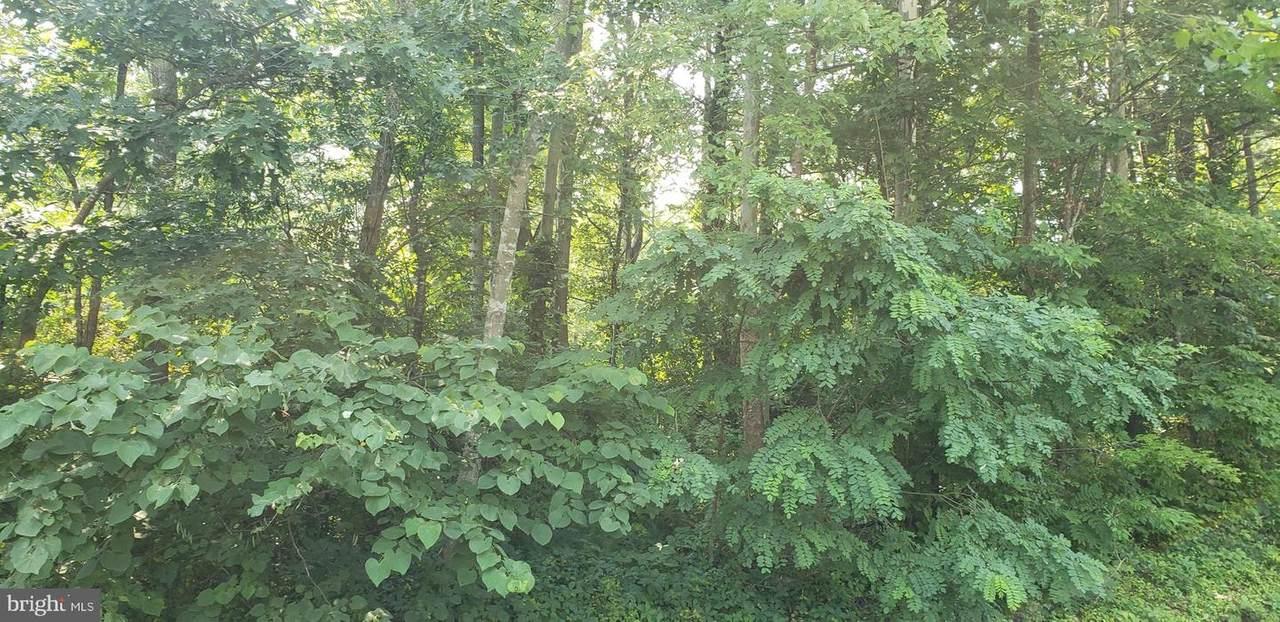 Cottonwood Drive - Photo 1