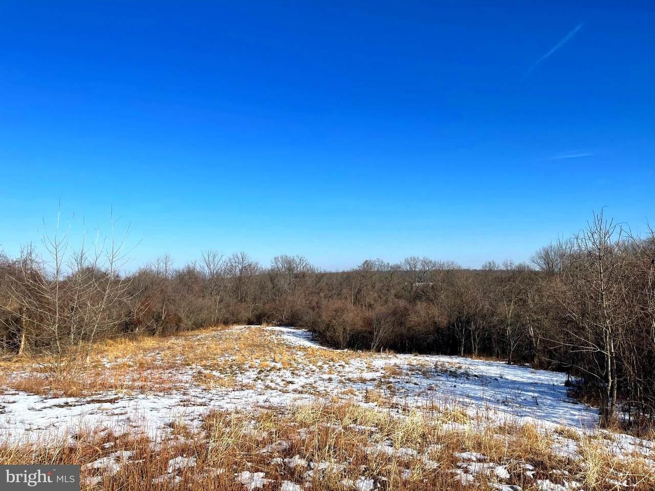 21828 Clear Creek Lane - Photo 1