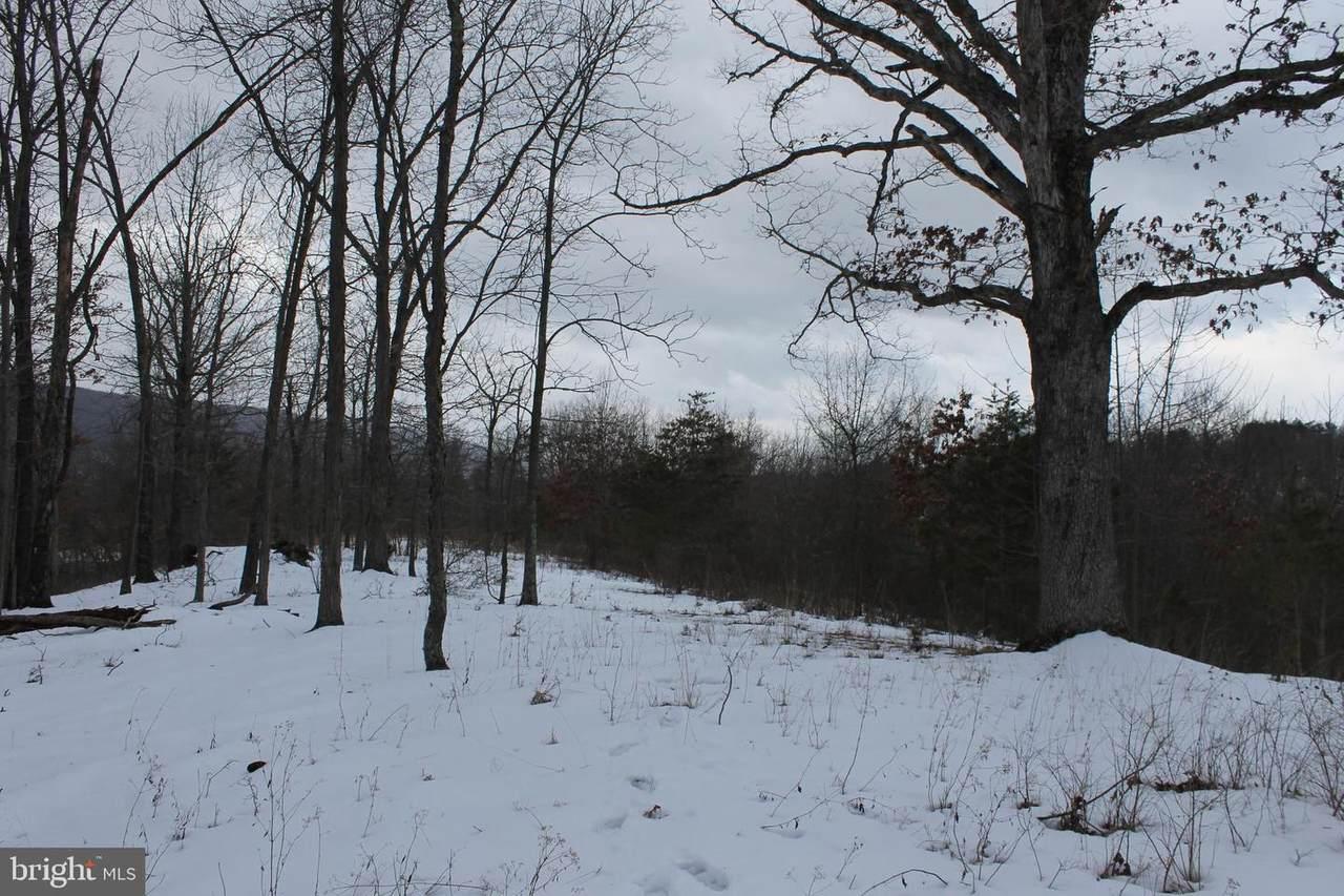 LOT 16 Silver Gap View - Photo 1
